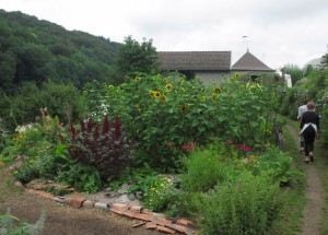 88 PLOMBIERES Fête des Jardins en terrasses Vue des jardins 2red 2014 08 03