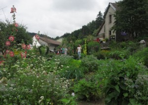 88 PLOMBIERES Fête des Jardins en terrasses Vue des jardins 5red 2014 08 03
