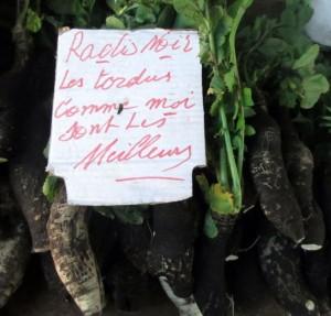RBC marché radis noir red
