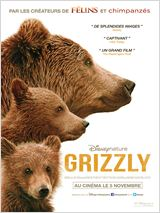 aff grizzly