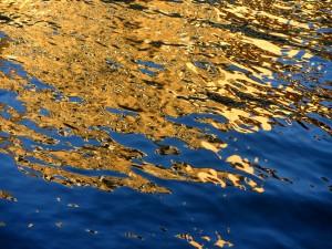 L'Ill reflets le soir bleu et or 1