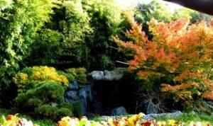 67-wittisheim-jardins-de-gaia-4-red